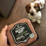 Can dogs eat Beyond Meat?